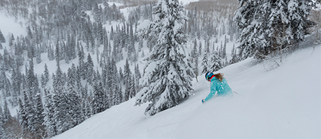 Skier in a bright blue jacket skiing powder