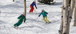 Ski Instructor with two skiers skiing through aspen trees