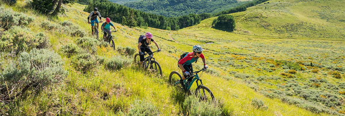 a group of four mountain bikers cross country mountain biking through a field of green grass