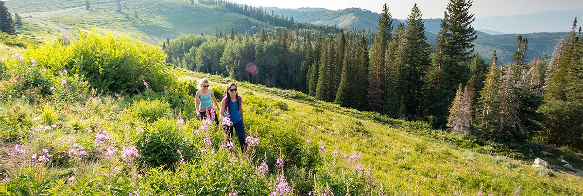 Two girls hiking in through tall green grass and wildflowers at Deer Valley Resort